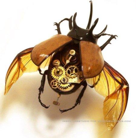 Spiaccicare questo sarebbe un macello. Immagine insectlabstudios.com