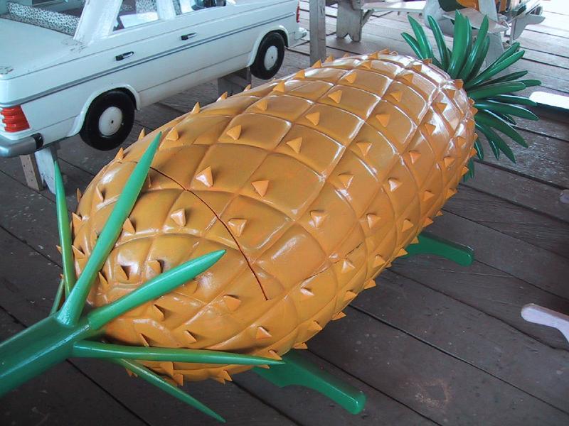 Una bara a forma di ananas. Se non la volete siete già morti ma qualcuno si è dimenticato di dirvelo.