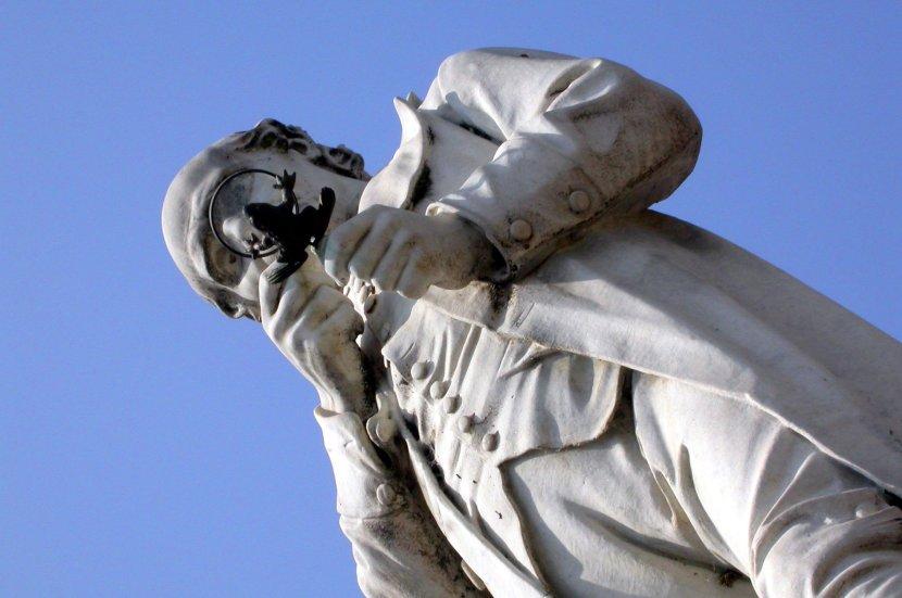Spallanzani contempla la sua prossima vittima. Immagine Wikimedia Commons